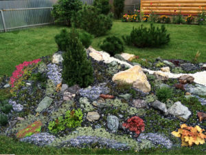 Красногорский - рокарий- сочетание красоты растений и камня