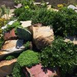 Медведевский район. Притягательность воды и камня