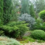 Частное озеленение в Марий Эл