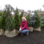 Посадка хвойных и лиственных растений в Марий Эл